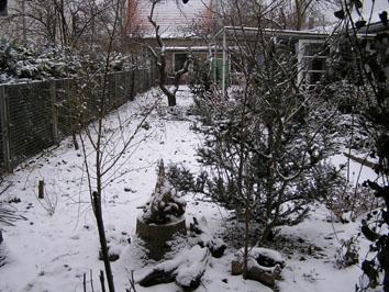 Winter in Potsdam Pension Mittenentzwei